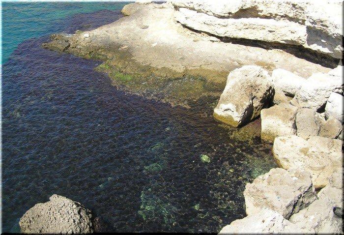 Ленивый пляж Оленевка Крым