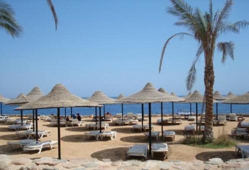 Пляж отеля Verginia Sharm Resort  4*