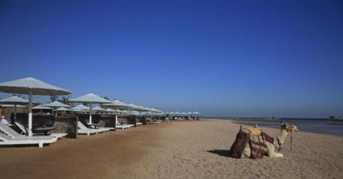 Пляж отеля Pharaoh Azur Resort 5*