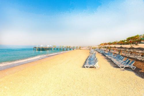 Пляж Дельфин Ботаник Платинум отель