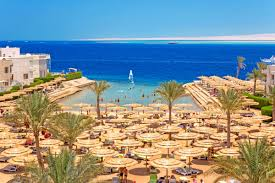 Пляж отеля Sea Gull 4* хургада